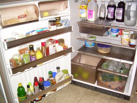 Interior of Karen Falk's fridge